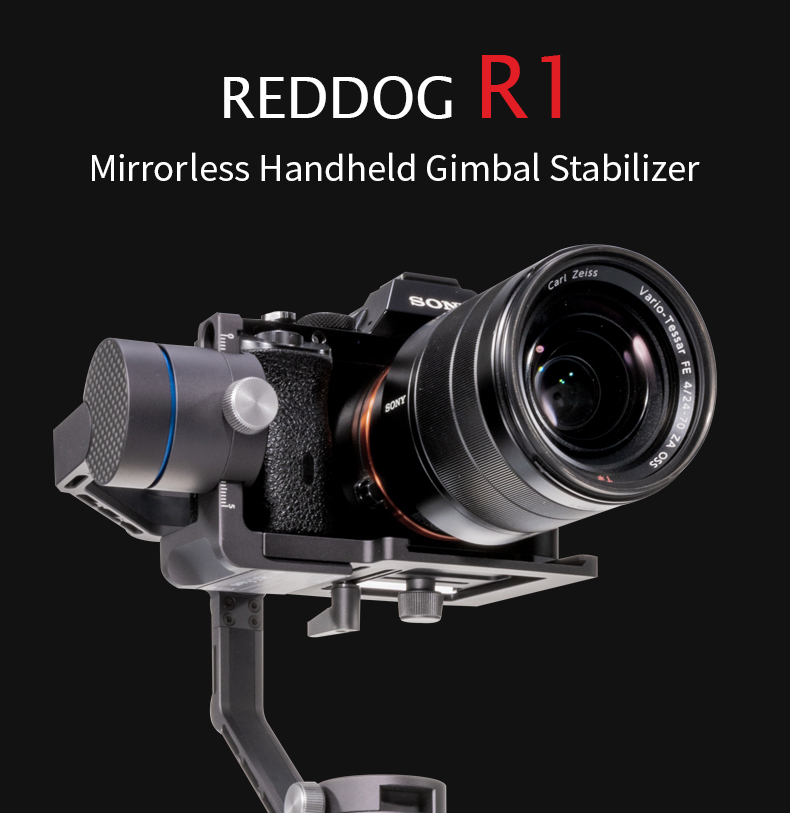 REDDOG R1 01