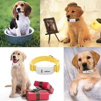 High quality pet collar Global Locator Real Time Smart Pet GPS Tracker for Pet Dog Puppy Cat GPS Collar Tracking