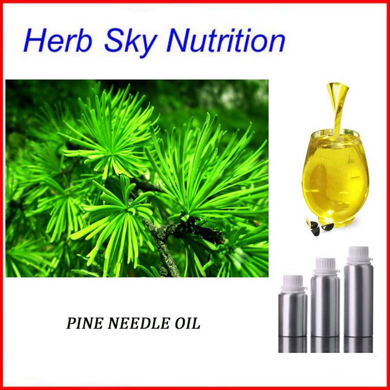 Hot sale natural pure pine needle oil high grade skin care s