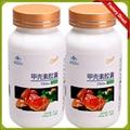 Free shipping 2 bottles enery Chitosan chitin