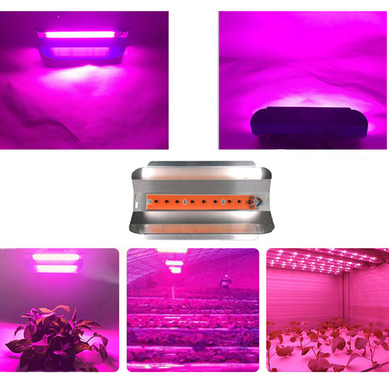 LED High Power COB Smart Ic Lamp Blubs 380-840nm 50W 100W AC 220V 110V Pink Plant Lights Light Source For Vegetable Plant Growt