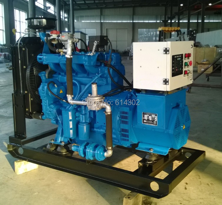 Высокое качество 10 кВт генератор природного газа/LPG генератор/биогазовый генератор от китайского поставщика