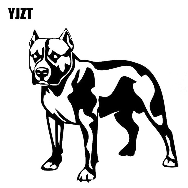 Yjzt 13cm11 9cm Dog Angry Bulldog Vinyl Decal Sticker Decor Car
