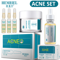 HEMEIEL Acne Treatment Set Anti Acne Face Cream Pimples Scar Removal Facial Serum Nature Plants Essence Whitening Skin Care Set