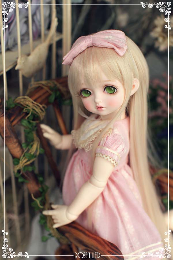 Rosenlied bambi doll bjd sd msd 1/4 ball joint doll resin BJD doll with eyes