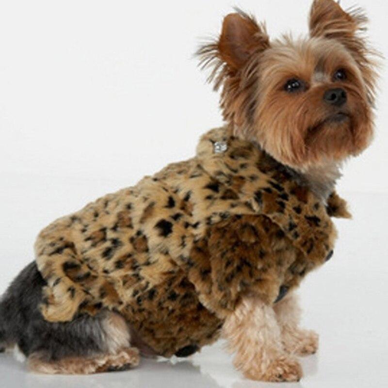 Dog Brand Name Clothes