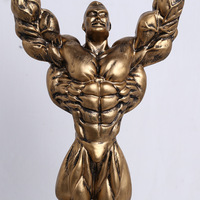 Customized Bodybuilding Aerobics Hercules Electroplate Resin Figure Trophy Cup Souvenir Trophies And Awards free shipping