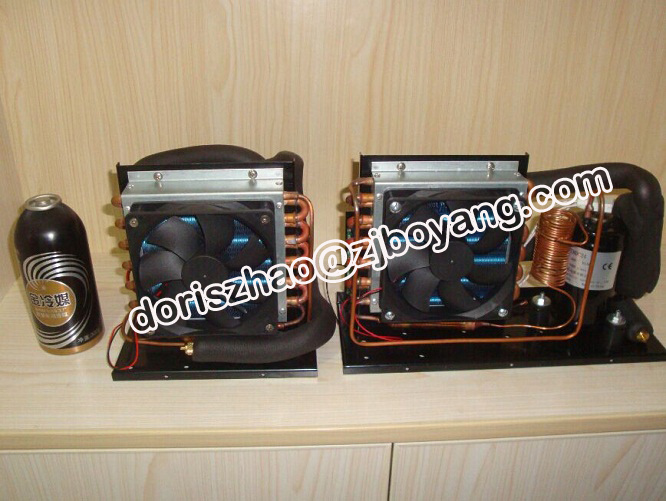12v Refrigeration Units Mini Condensing Unit For Dc Air