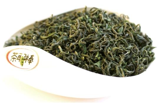 日照绿茶 1