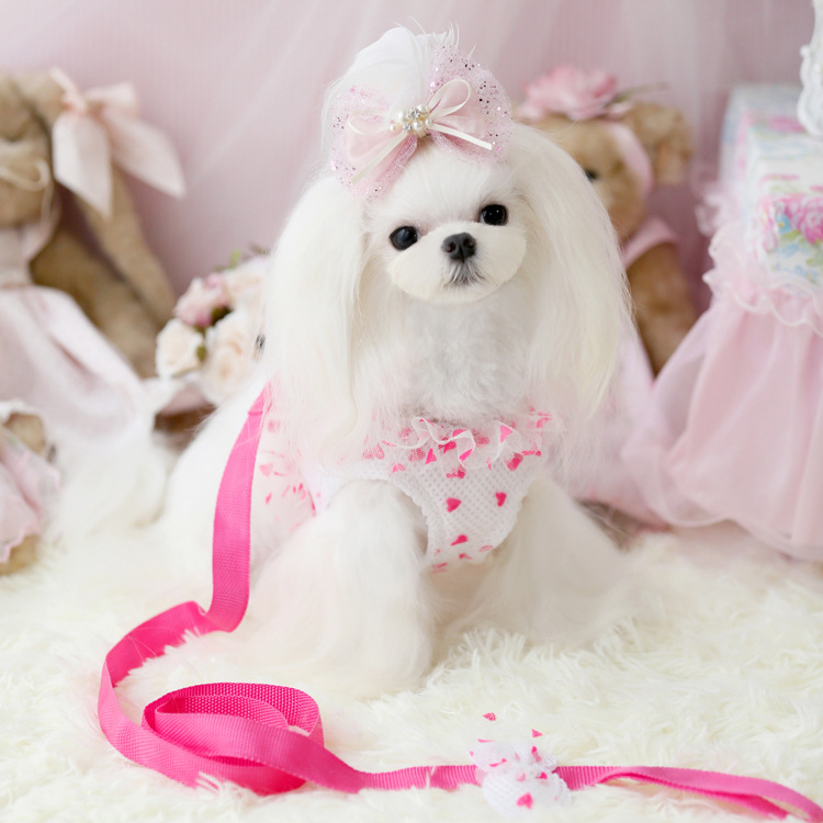 Xx Small Dog Harness