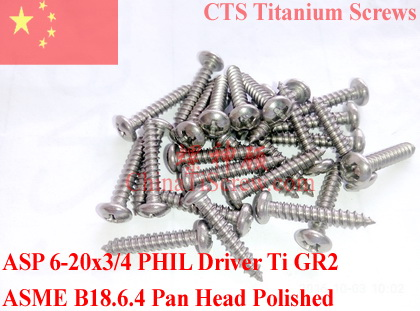 Titanium screws 6-20x3/4 Pan Head Phillips Driver Self Tapping 50 pcs Ti GR2