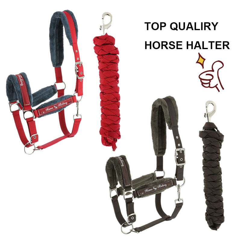 MOYLOR Top Quality Horse Halter Leading Horse Bridle Equestrain Cheval Horse Riding Racing Equipment Paardensport F рюкзак vivienne westwood 26013