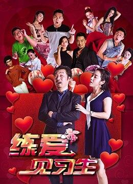《练爱见习生》2017年中国大陆喜剧,爱情电影在线观看