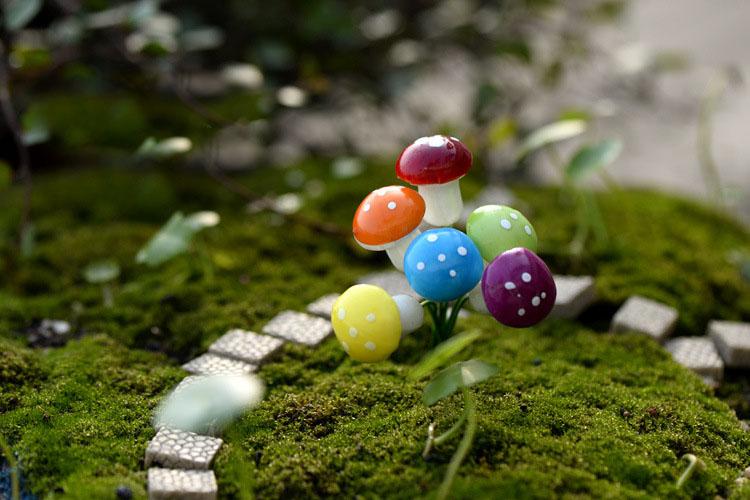 miniature mushrooms for sale