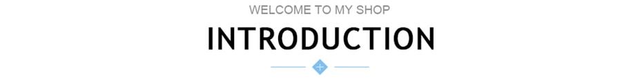 产品介绍标题