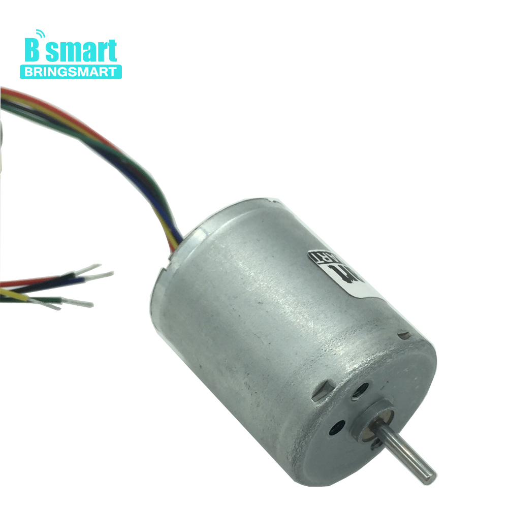 Bringsmart <font><b>6000rpm</b></font> <font><b>12V</b></font> Long Life Brushless Micro <font><b>DC</b></font> <font><b>Motor</b></font> High Speed Electric <font><b>Motor</b></font> Miniature <font><b>Motor</b></font> Low Noise For DIY part R2430 image