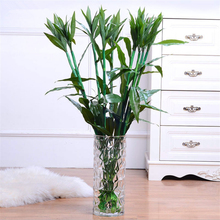 6pcs Lot Fashion Lucky Bamboo Artificial Plants Home Living Room Balcony Office Decoration China