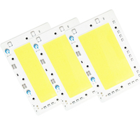 Smart IC Led Cob Chip Lamp 50W 150W AC 220V 110V Led Lamp No Need The