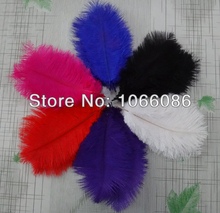 """Free Shipping! 100pcs/lot 20-25cm 8-10"""" Top quality ostrich feathers ostrich drab feather plumes"""
