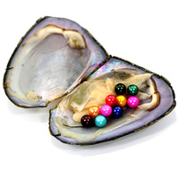 High Quality Cheap Love Freshwater Shell Pearl Oyster 10 Pearls 6 7mm Colorful Round Pearl Oyster With Vacuum Packaging FR041