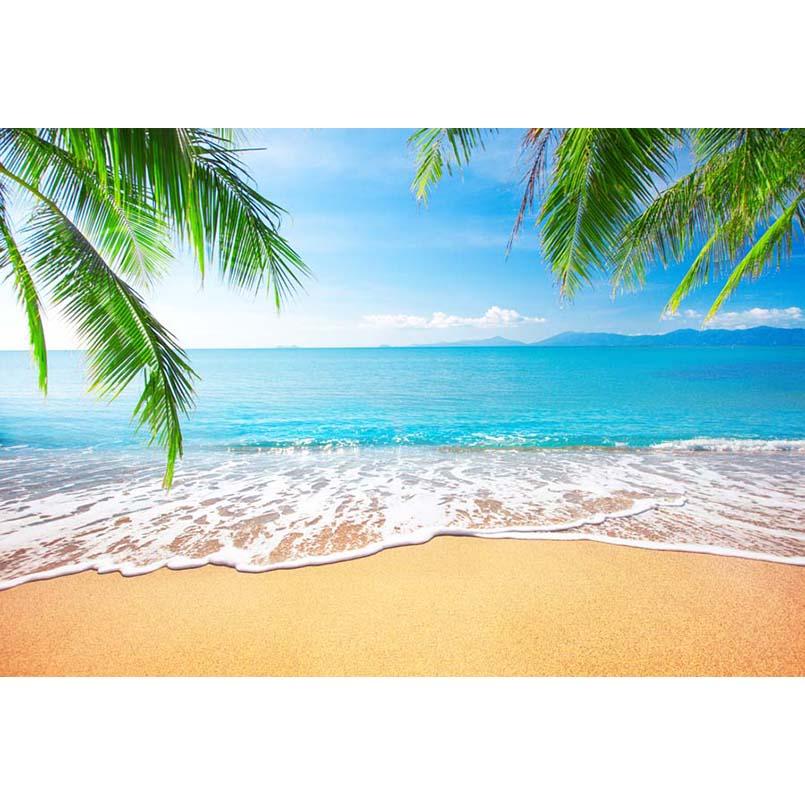 Vinyl Photography Background Seaside Ocean Beach Blue Sky ...