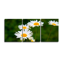 Laeacco Abstract White Flower Pictures 3 Panel Garden Posters and Prints Canvas Paintings Wall Art Home Living Room Decoration