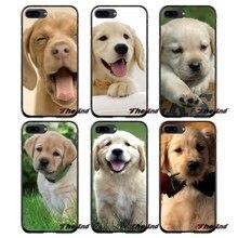 Tas Keras Telepon Kasus Lucu Anjing Golden Retriever La Dor Untuk Lg L Nexus Vx