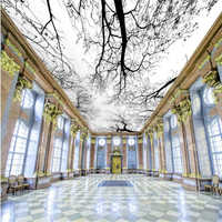 Beibehang Zenith HD Tree Modern Mural Photo Wallpaper 3D Ceiling Mural Living Room Theme Hotel fashion Decor 3d Wallpaper