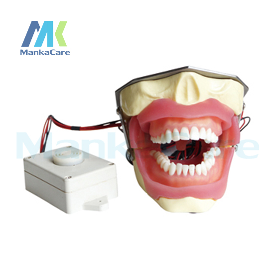 Manka Care - Anesthesia Extraction Model with buzzer Oral Model Teeth Tooth Model pro teeth whitening oral irrigator electric teeth cleaning machine irrigador dental water flosser teeth care tools m2