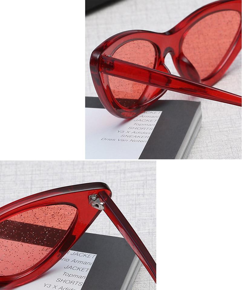 cat eye sunglasses (24)