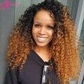 Glueless Полный Шнурок Человеческих Волос Парики Бразильские Волосы Девственницы Kinky вьющиеся Rosa Продукты Волос # 1b/30 Ломбер Кружева Перед Парик Ребенка волос
