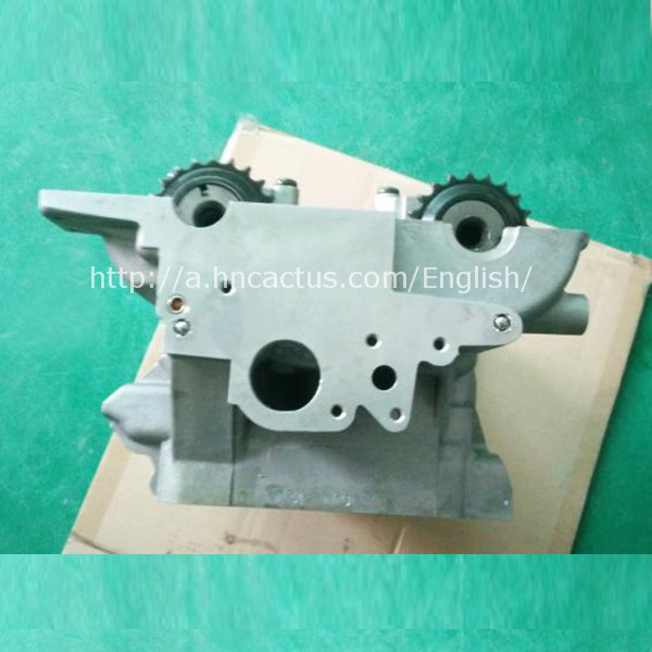 ANQ AWB BAF AWL DKB cylinder head for VW audi a4 a6