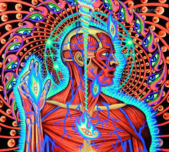 Alex Grey Lateralus Tool Art Poster 26X24 Canvas Printing