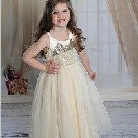 2016 אחרון קיץ בנות טמפרמנט שמלה בצבע בז 'Dsequins Pettidress לפרוע שמלת ילדה