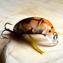 Top Quality Japan Carp Bait Freshwater Fishing LureS Fishing tackle 35mm4g Beetle Insect Lure