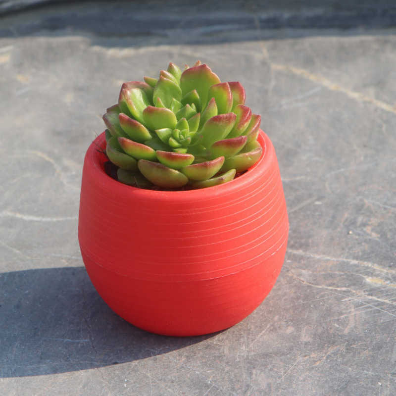 صغيرة ملونة مستديرة البلاستيك النبات اناء للزهور ديكور غرفة مكتب المنزل حديقة المنزل مكتب ديكور زارع سطح المكتب أواني الزهور