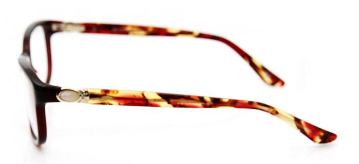 Ladies Eyeglasses (14)