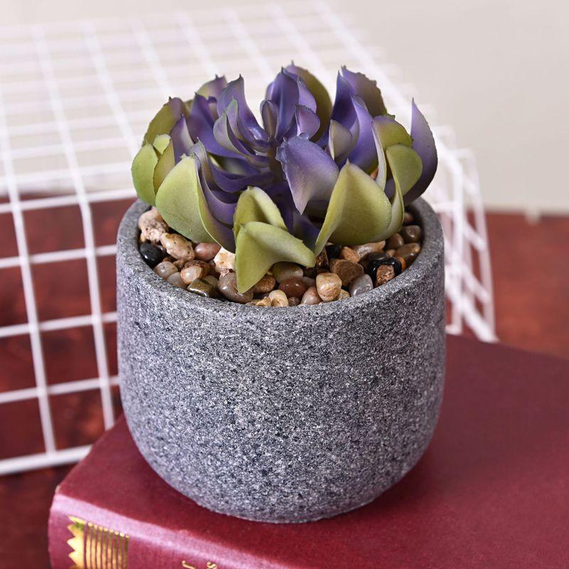 Marbre succulente plante maison Simulation charnue en pot décoration 020 y