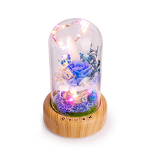 Riotcats Microlandscape plant bluetooth speakers multifunctional charging colorful night light stereo speaker Chrismas gift