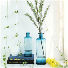 Fashion Glass Vase Home decorative floral glass colorful Tabletop Bottle Terrarium Hydroponic Container wedding  Decor