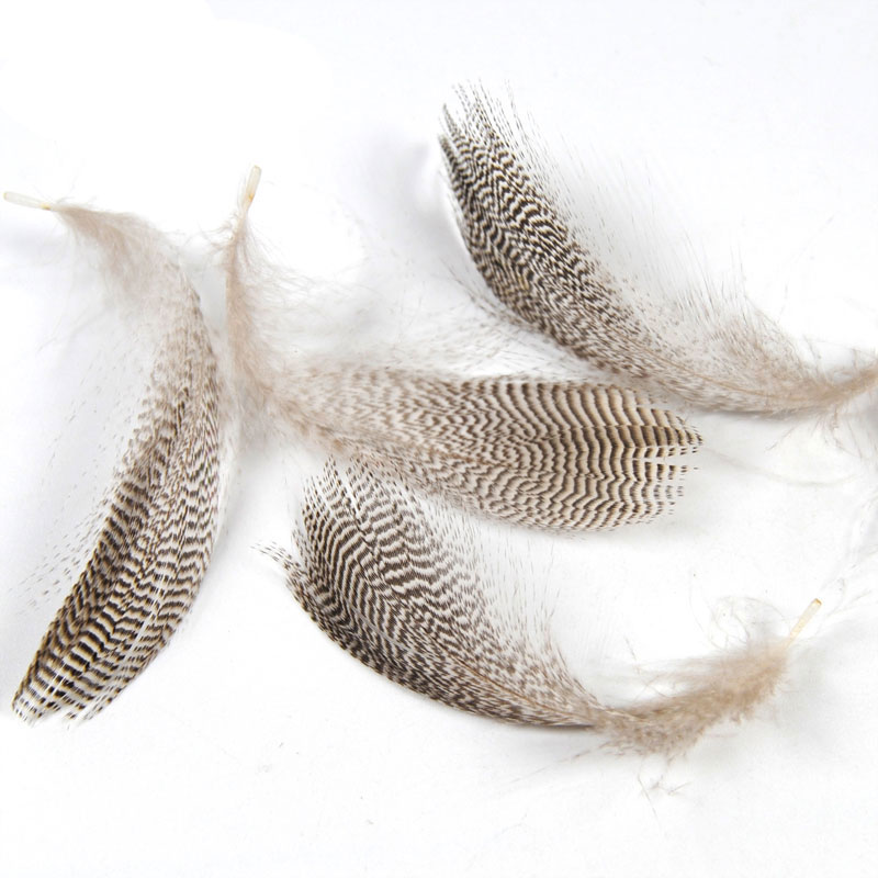 [ 20PCS/Bag ] Natural Barred Mallard Duck Flank Feathers Wild Goose Hair for Fly Wings Tails Streamers Fly Tying Material ...
