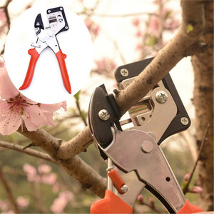 Image 3 - 炭素鋼苗生着グラフトガーデンツール保育園果樹グラフト