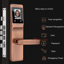 Smart Door Lock Electronic intelligent Palmprint Face Recognition Lock Lock Digital Security Touch Screen Keyless Safety Locks
