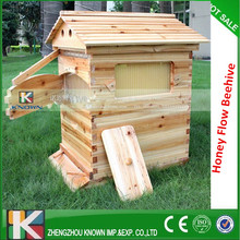 free-flowing langstroth beehive of wooden beehive from beehive