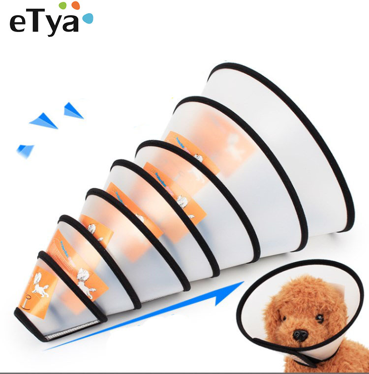 new-dog-accessories-pet-products-plastic-cat-dog-collar-elizabeth-circle-anti-bite-and-scratching-collars-beauty-healing-brace