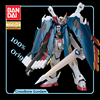 Bandai Odaiba Limited GUNDAM Base MG Pirate GUNDAM Fully Armed Special Painted Version Action Figure Kids Assembled Toy Gift 1