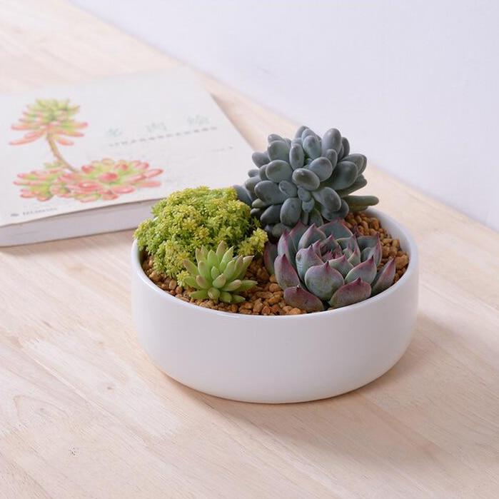 Emejing Indoor Decorative Planters Pictures - Interior Design ...