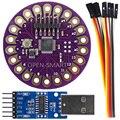 Lilypad ATmega328P portátil Placa de Desarrollo + CH340G USB a TTL módulo de programación para Arduino