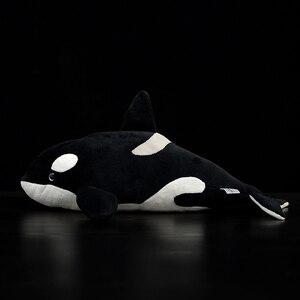 Image 2 - Jouets vivants orques Extra doux, 15 pouces, jouets de baleine tueur en peluche pour enfants, jouet de vie océanique, cadeaux danniversaire