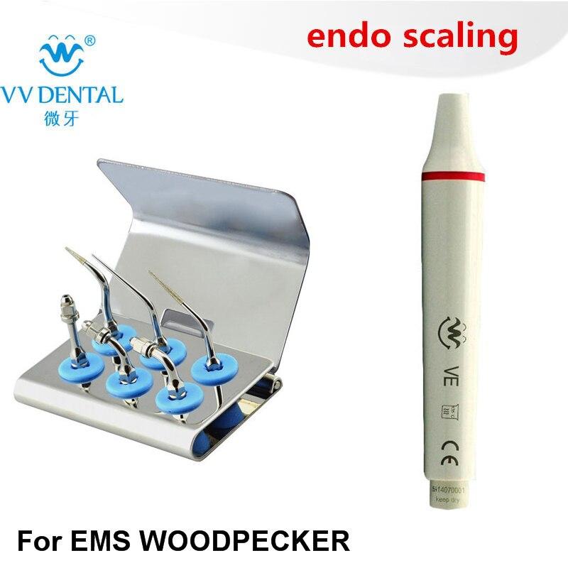 Kit d'embout Endo de détartreur dentaire avec pièce à main dentaire équipement EMS de pic-bois pour endodontie de détartreur